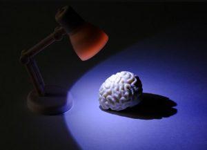 Brain training programmes