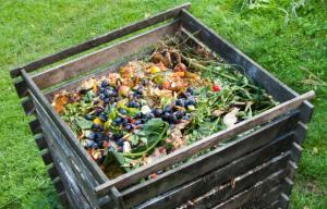 Start Making a Compost Bin